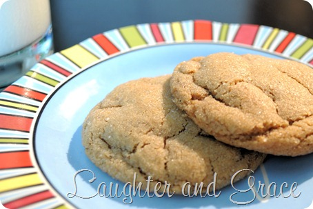 Gingerbread Softies